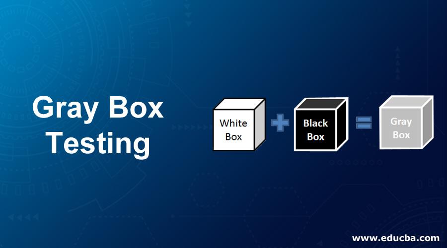 Gray-Box-Testing