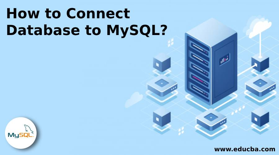 How to Connect Database to MySQL