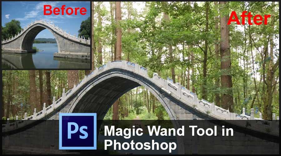 Magic Wand Tool in Photoshop