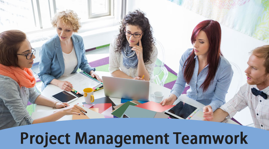 Project Management Teamwork