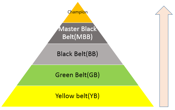 Six Sigma Yellow Belt 1