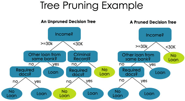 tree pruning Exam