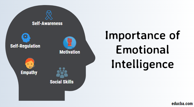 Importance Of Emotional Intelligence | Features and