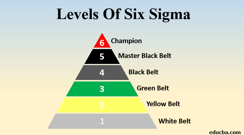 levels of six sigma