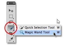 magic wand tool 1