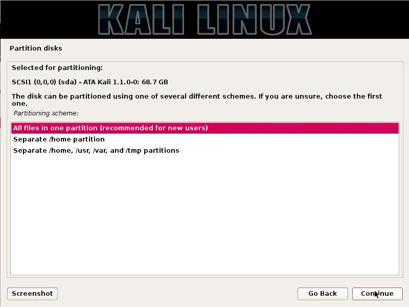 Kali Linux - Partitioning Scheme