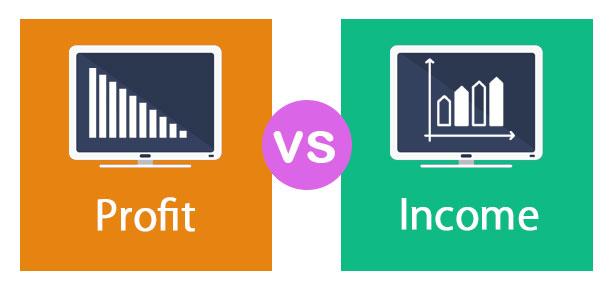 Profit vs Income