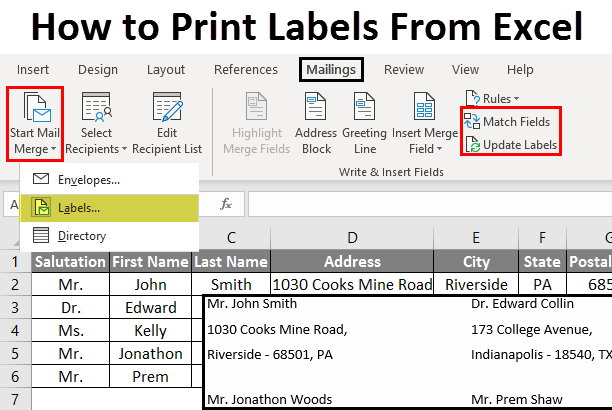 How to Print Labels From Excel? | Steps to Print Labels from Excel
