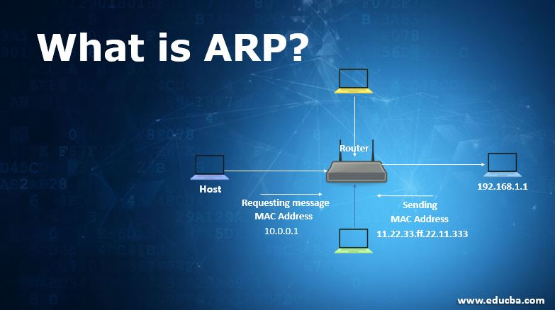 what is ARP