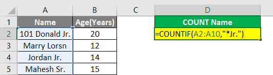 Count Names in Excel example 2.5