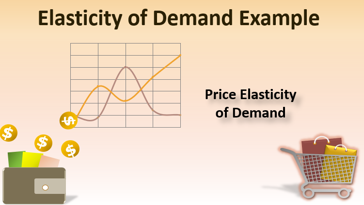 Elasticity Of Demand Example Examples On Elasticity Of Demand