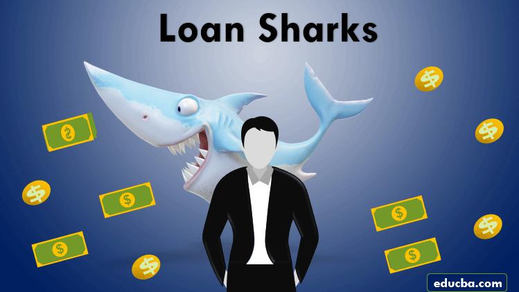 Loan Shark-1