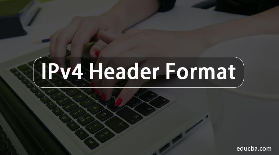 IPv4-Header-Format