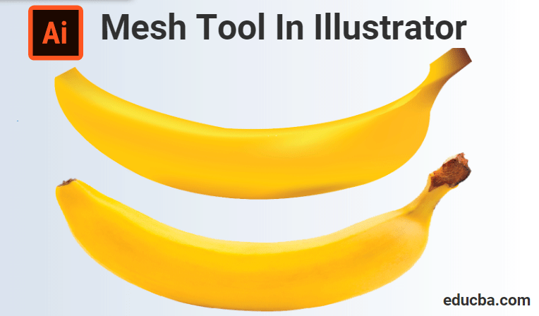 Mesh Tool In Illustrator | How to use Mesh tool in Illustrator