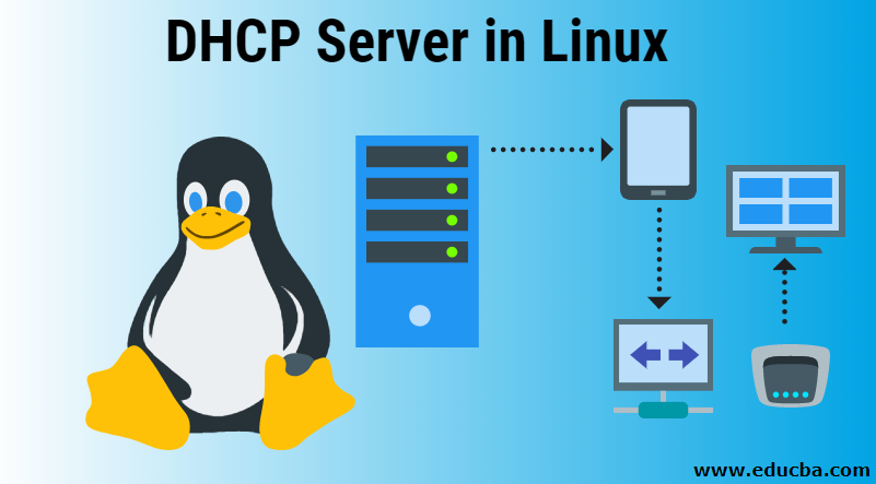 DHCP Server in Linux