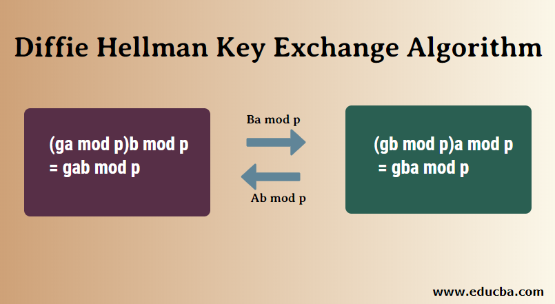 Diffie Hellman Key Exchange Algorithm