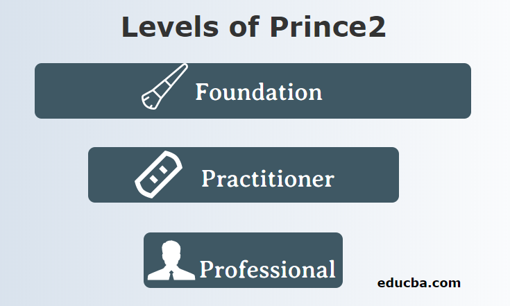 Levels of Prince2