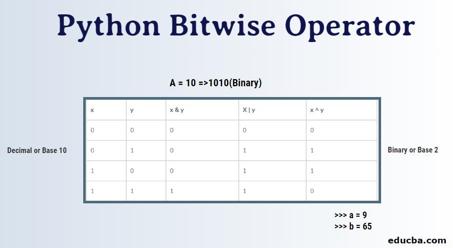 Python Bitwise Operator