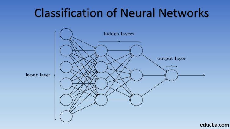 classification of neural networks