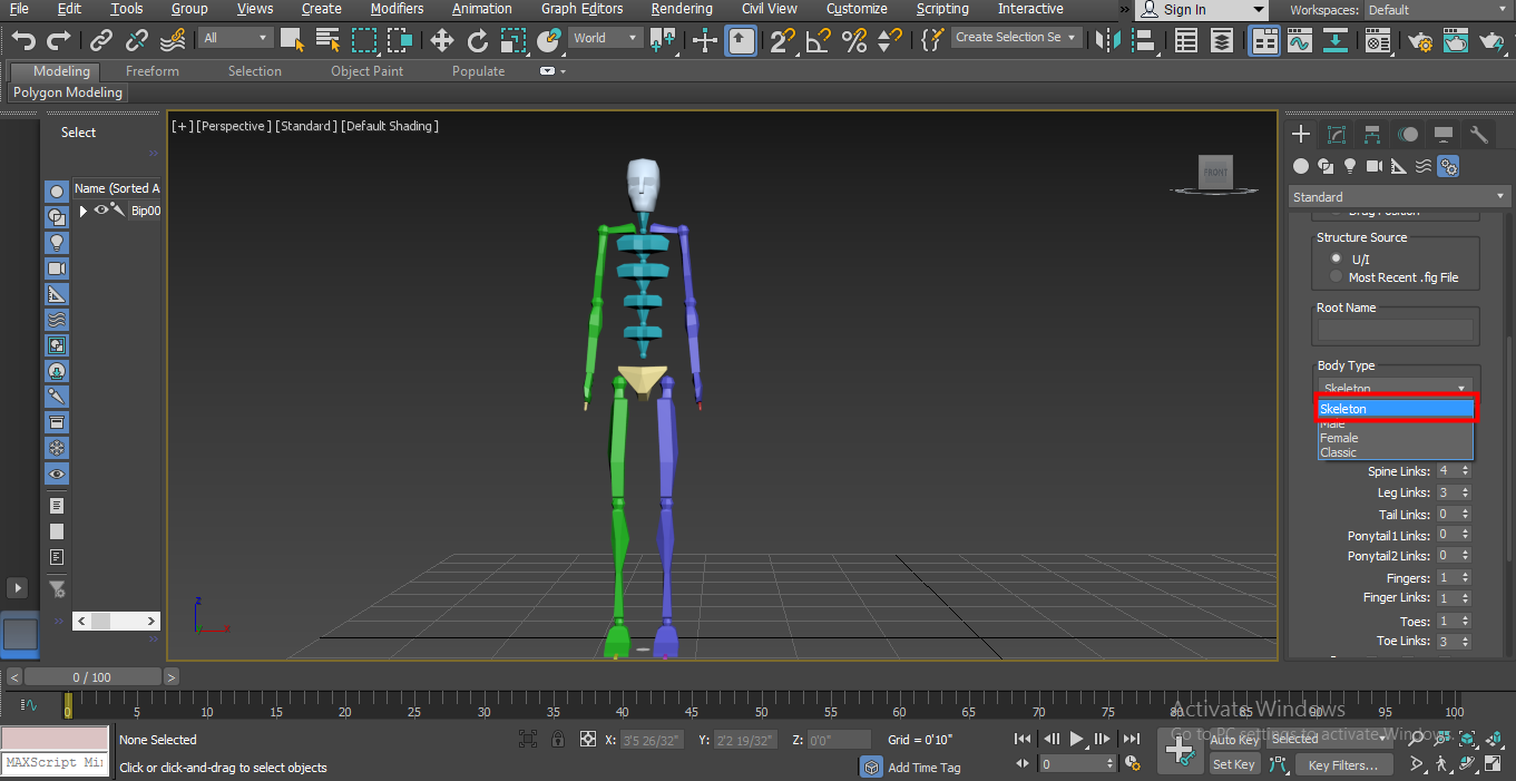 Biped in 3ds Max - skeleton body parts