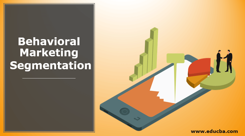 Behavioral Marketing Segmentation