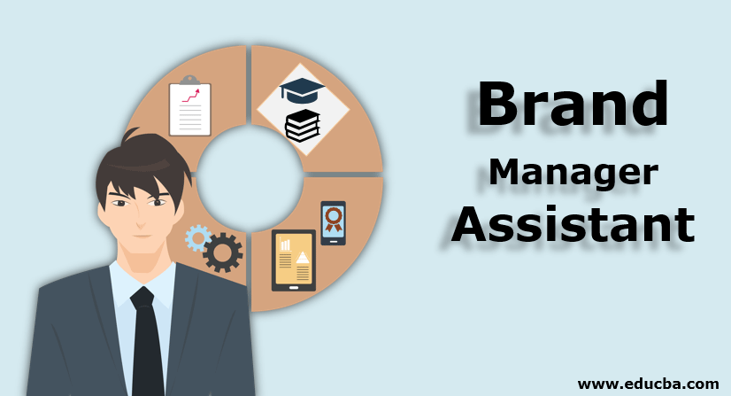 Brand Manager Assistant