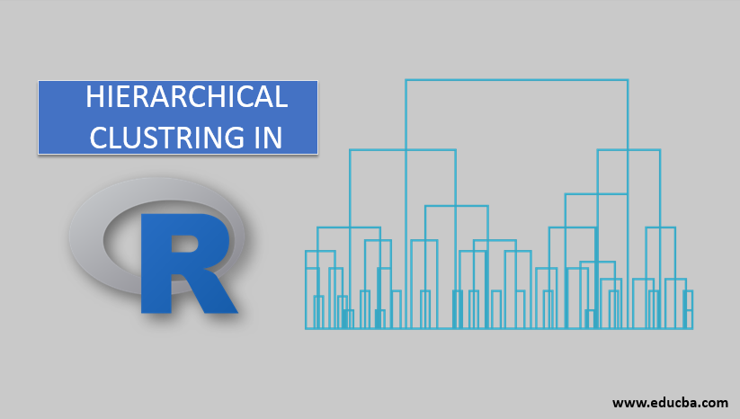 HIERARCHICAL Clustring in r