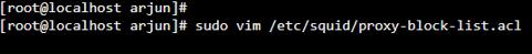 Proxy Server 8