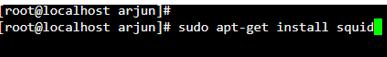 Linux Proxy Server2