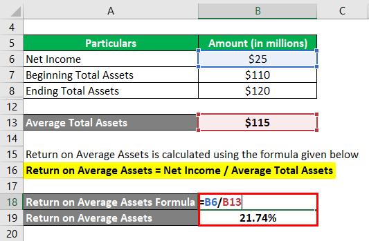 Return on Average Assets-1.3