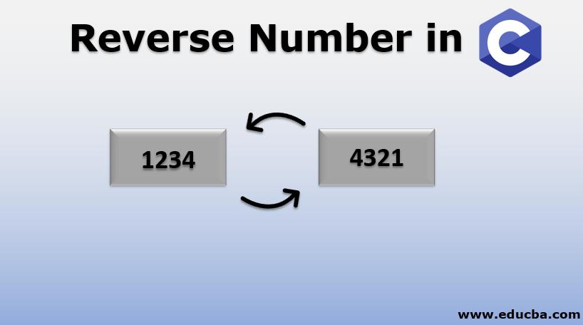 Reverse Number in C