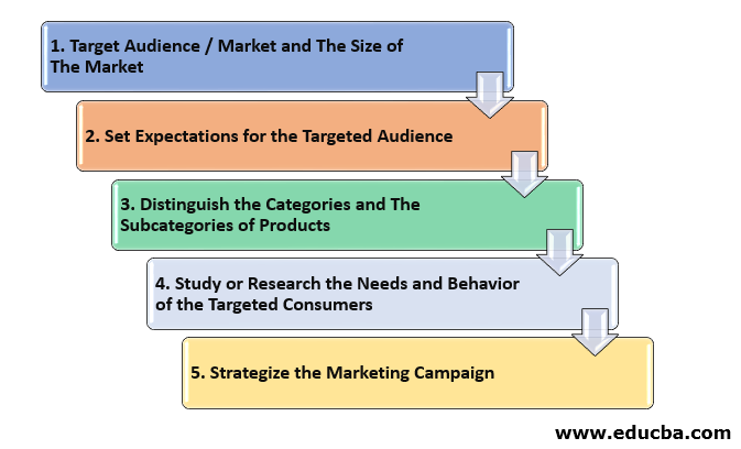 Step To Step Guidelines for Market Segmentation Process