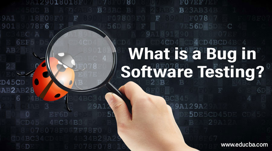 What is a Bug in Software Testing?