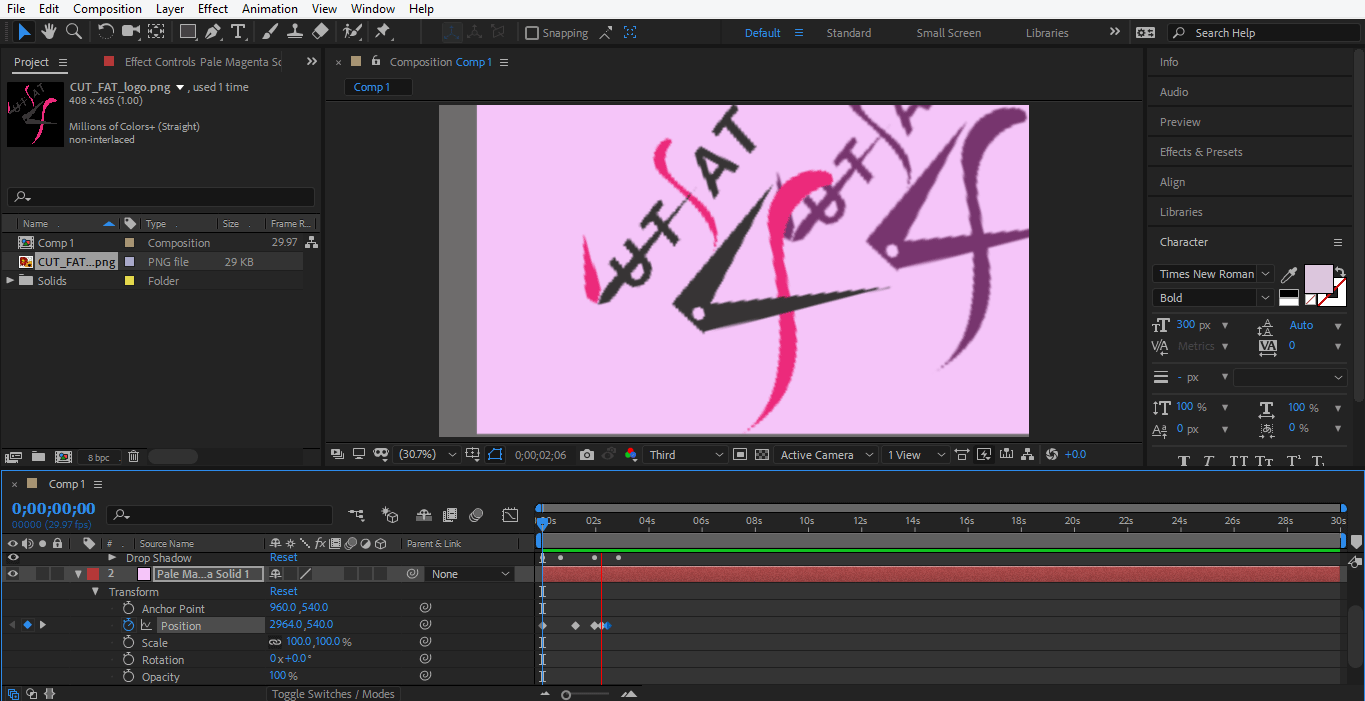 final animation in logo after effects