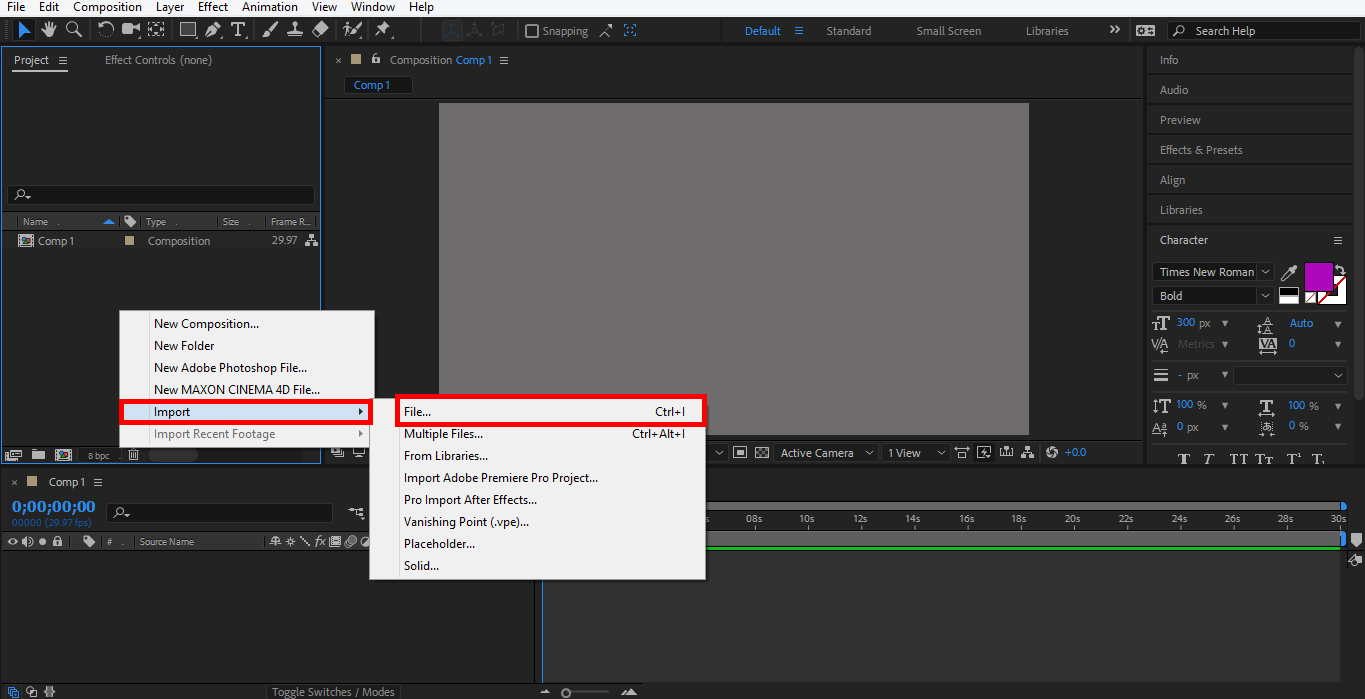 import file (Logo Animation in After Effects)