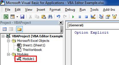 module in VBA project