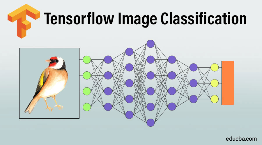 Tensorflow Image Classification