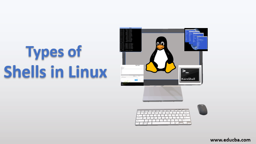 types of shell in linux