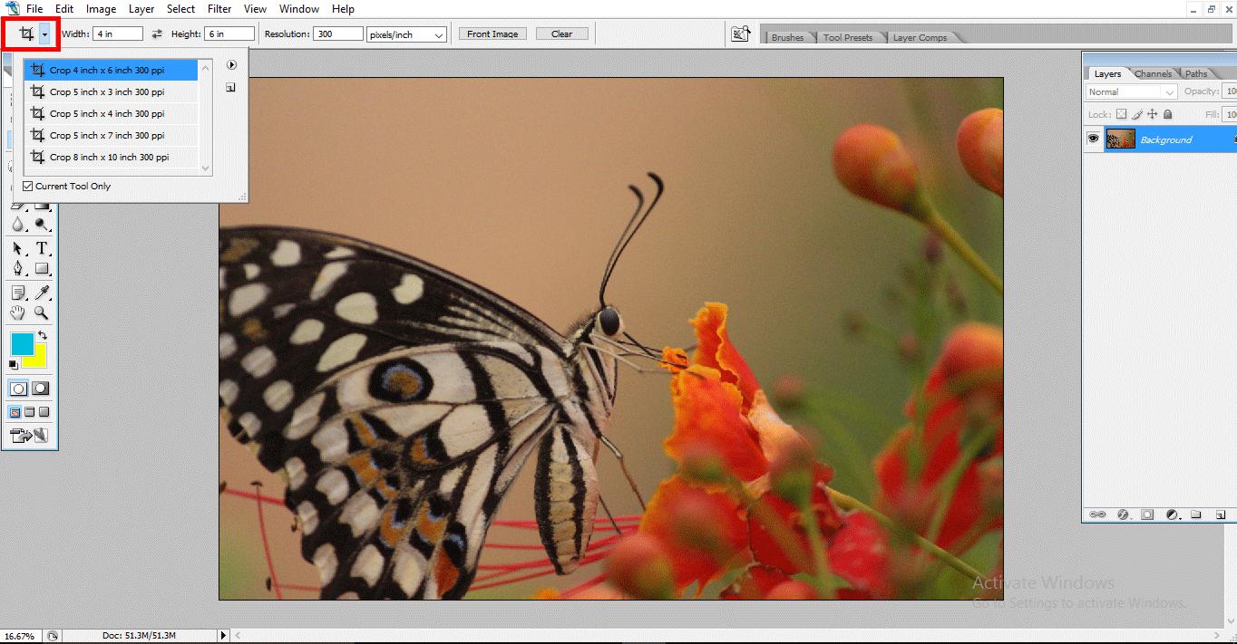 4x7 crop (Crop Tool in Photoshop)
