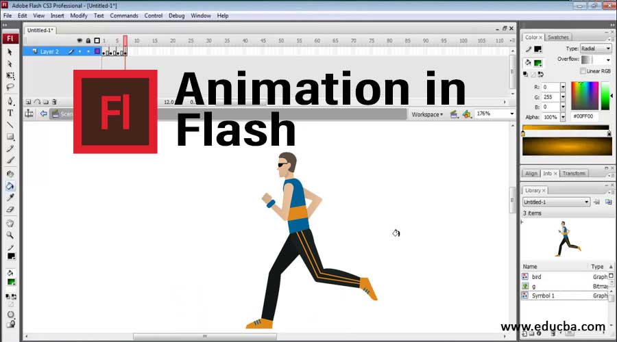 Animation in Flash