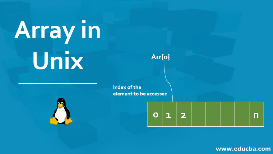Array in Unix