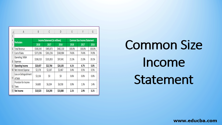 Common Size Income Statement 3