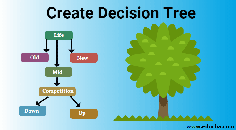 Create Decision Tree