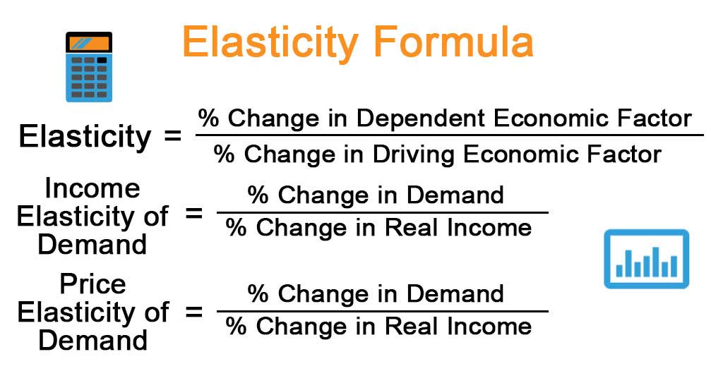 Elasticity Formula Explanation Example With Excel Template
