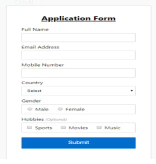 JavaScript Form Validation op 2