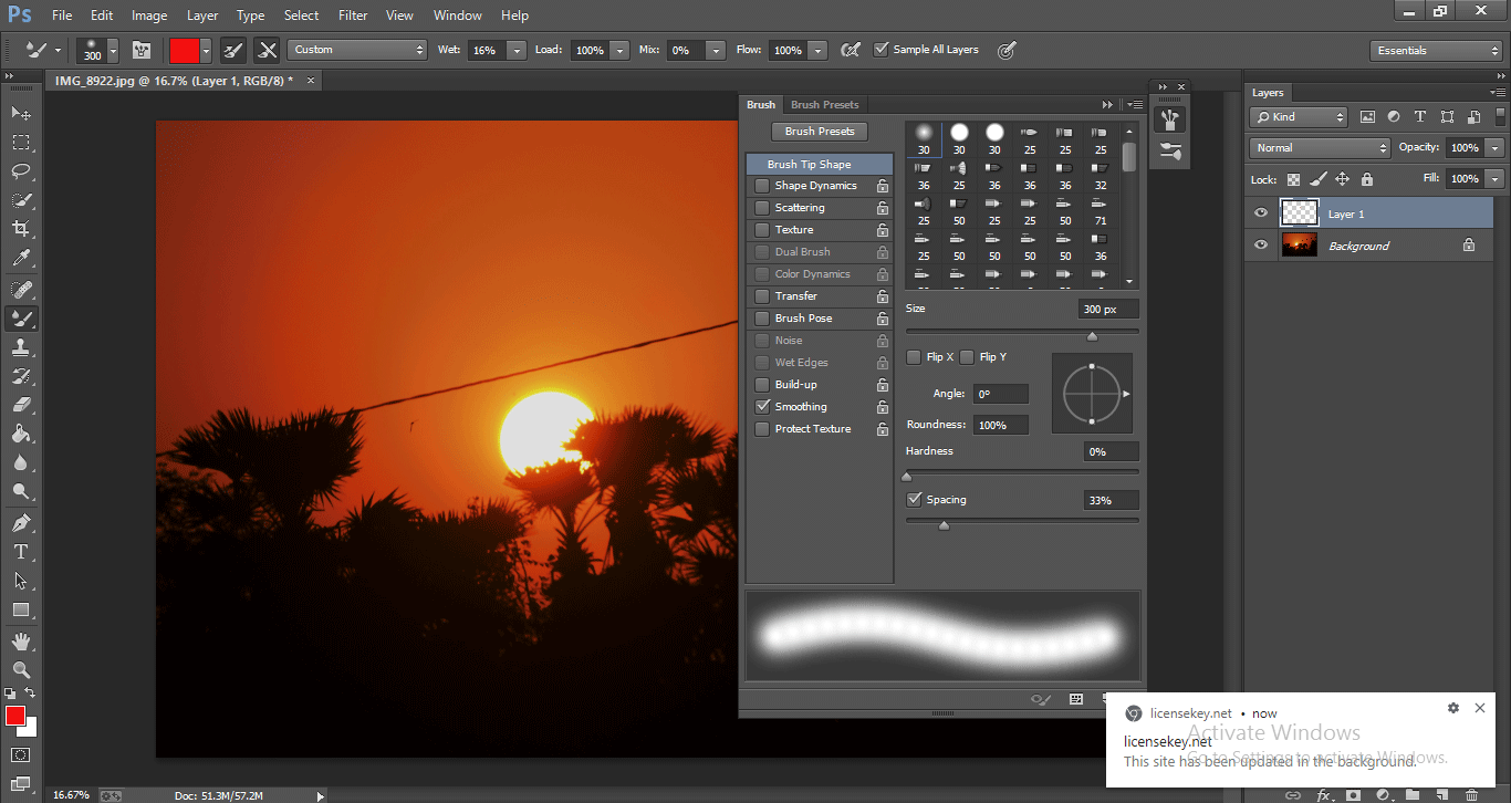 Photoshop Mixer Brush Tool 1-11