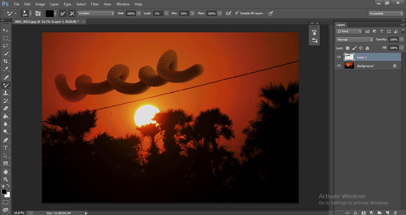 Photoshop Mixer Brush Tool 1-20