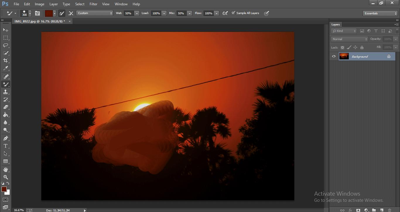 Photoshop Mixer Brush Tool 1-28