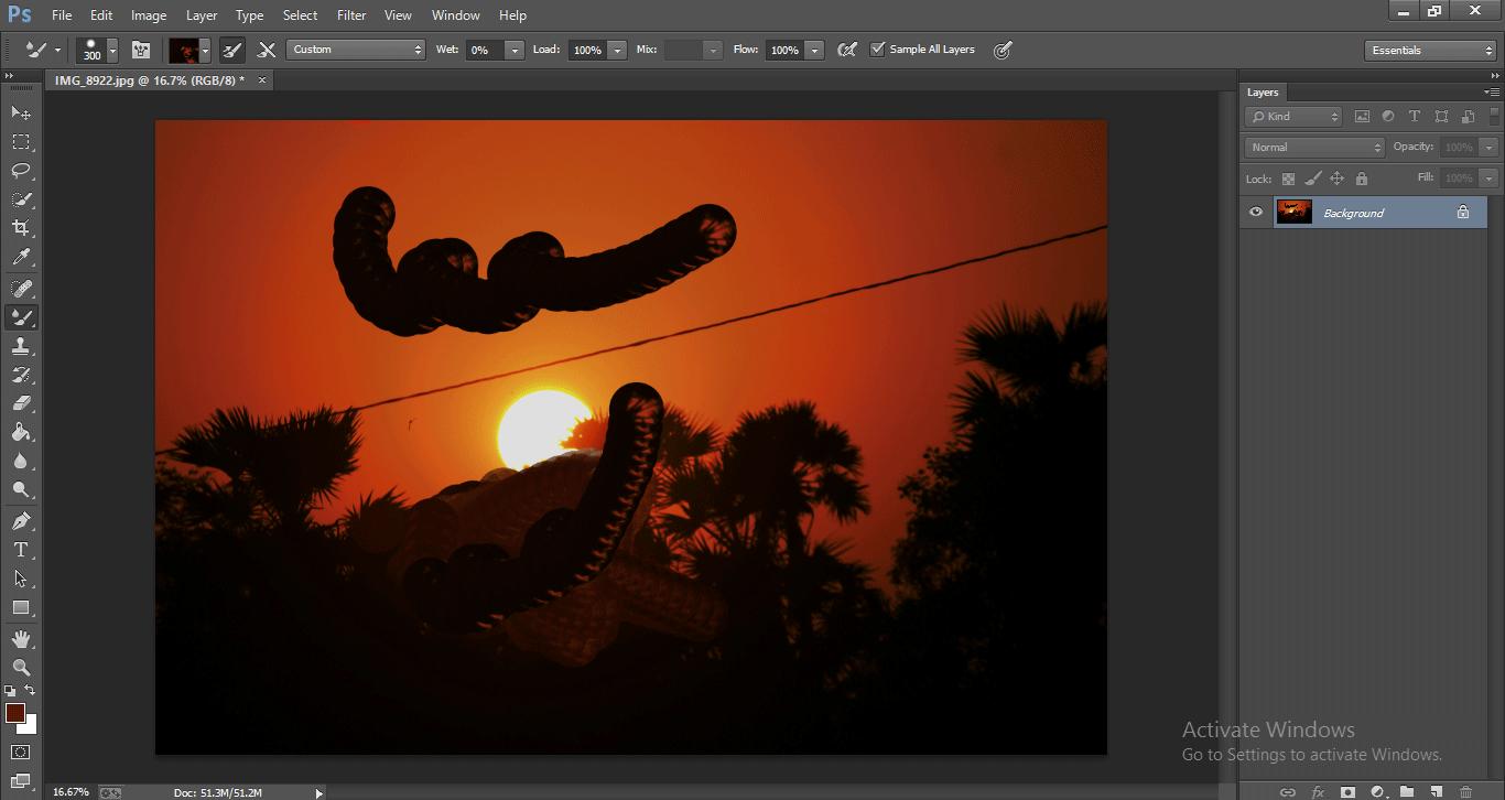 Photoshop Mixer Brush Tool 1-29