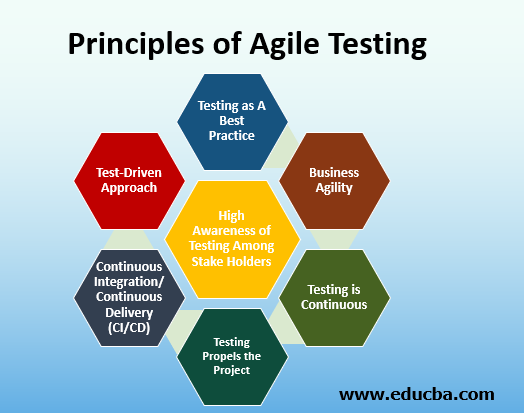 Principles of Agile Testing